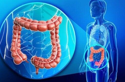 Paraziti: 6 semne aparent banale ce indica o boala parazitara