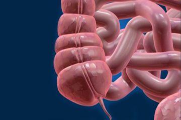 Paraziti simptome si tratament