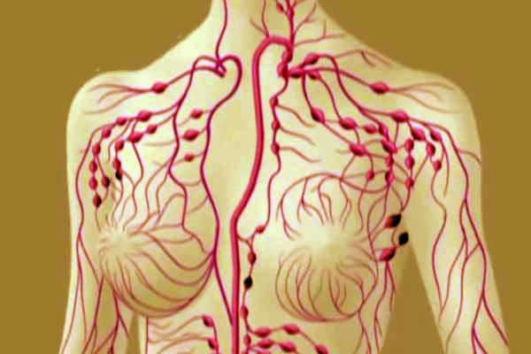 Detoxifierea prin gemoterapie