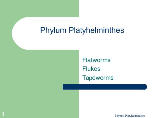 Exemple de platyhelminthes parazit,