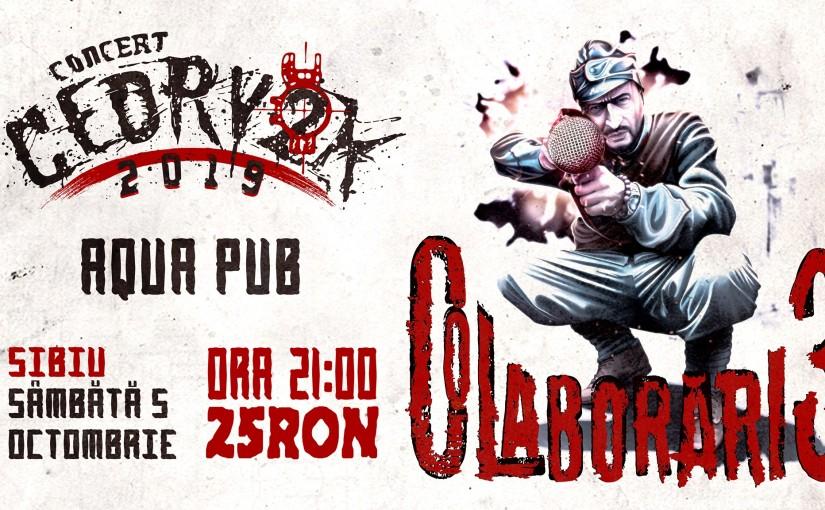 EVENTS Concert 8 Noiembrie / Concert Parazitii / Sibiu / Cotto