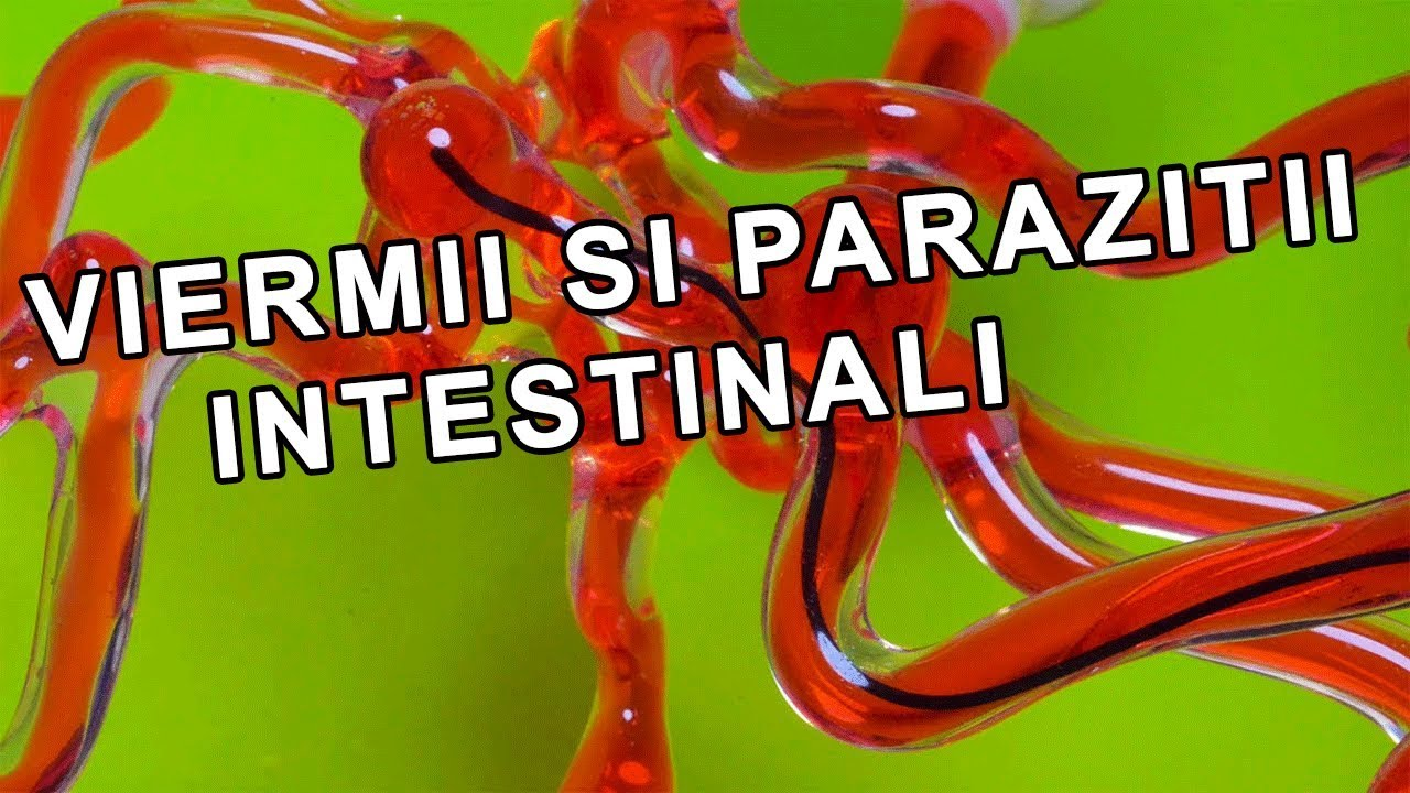 care sunt parazitii intestinali