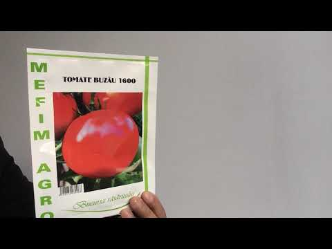 Toxoplasmoza cu HIV