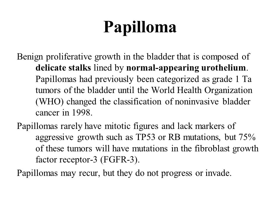 papillomas in the bladder hpv 16 cancer gorge
