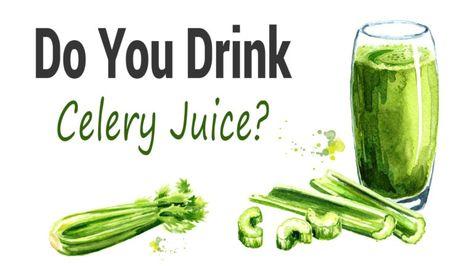 celery juice dysbiosis