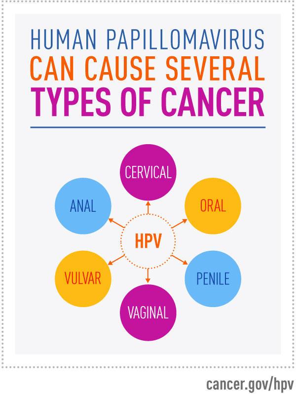 papillomavirus infection cancer