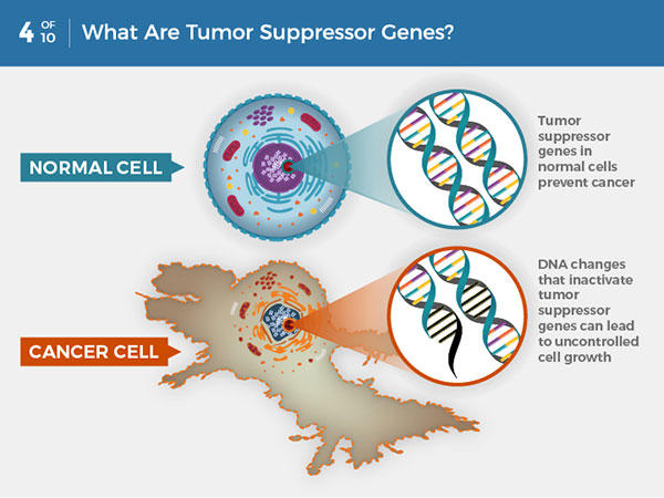 Cancer cells genetic changes