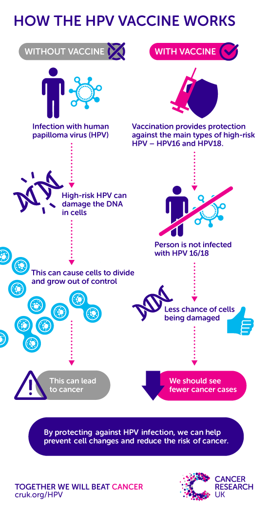 hpv high risk levels