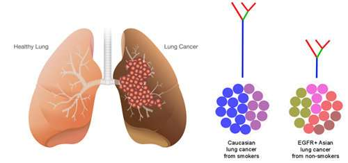 cancer and genetic links