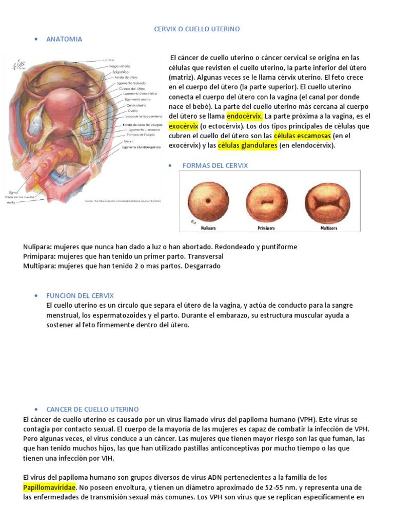 tratamentul viermilor de melc