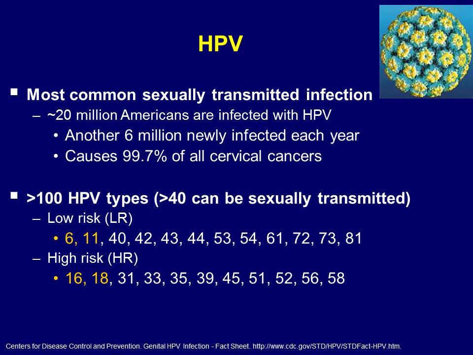 Human papillomavirus type 16 ncbi. Human papilloma virus literature