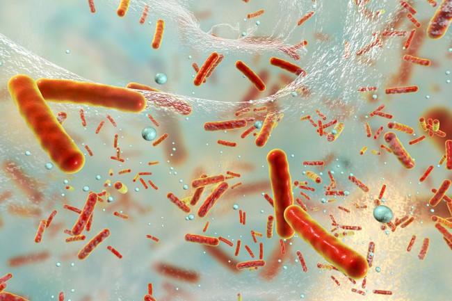 colposcopia per papilloma virus