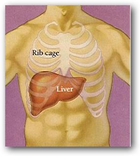 Detox pentru colon: reteta naturala din miere si seminte de in