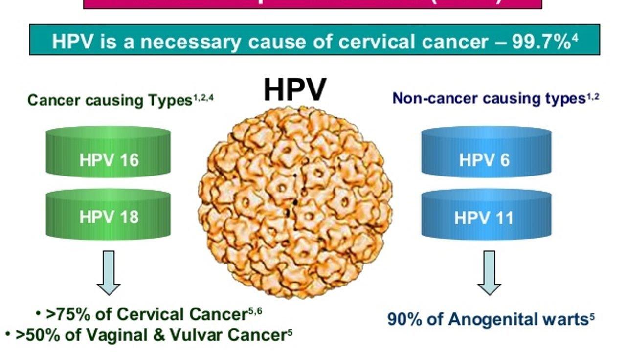 human papillomavirus hpv causes