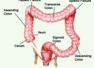 Endometrial cancer icd 10
