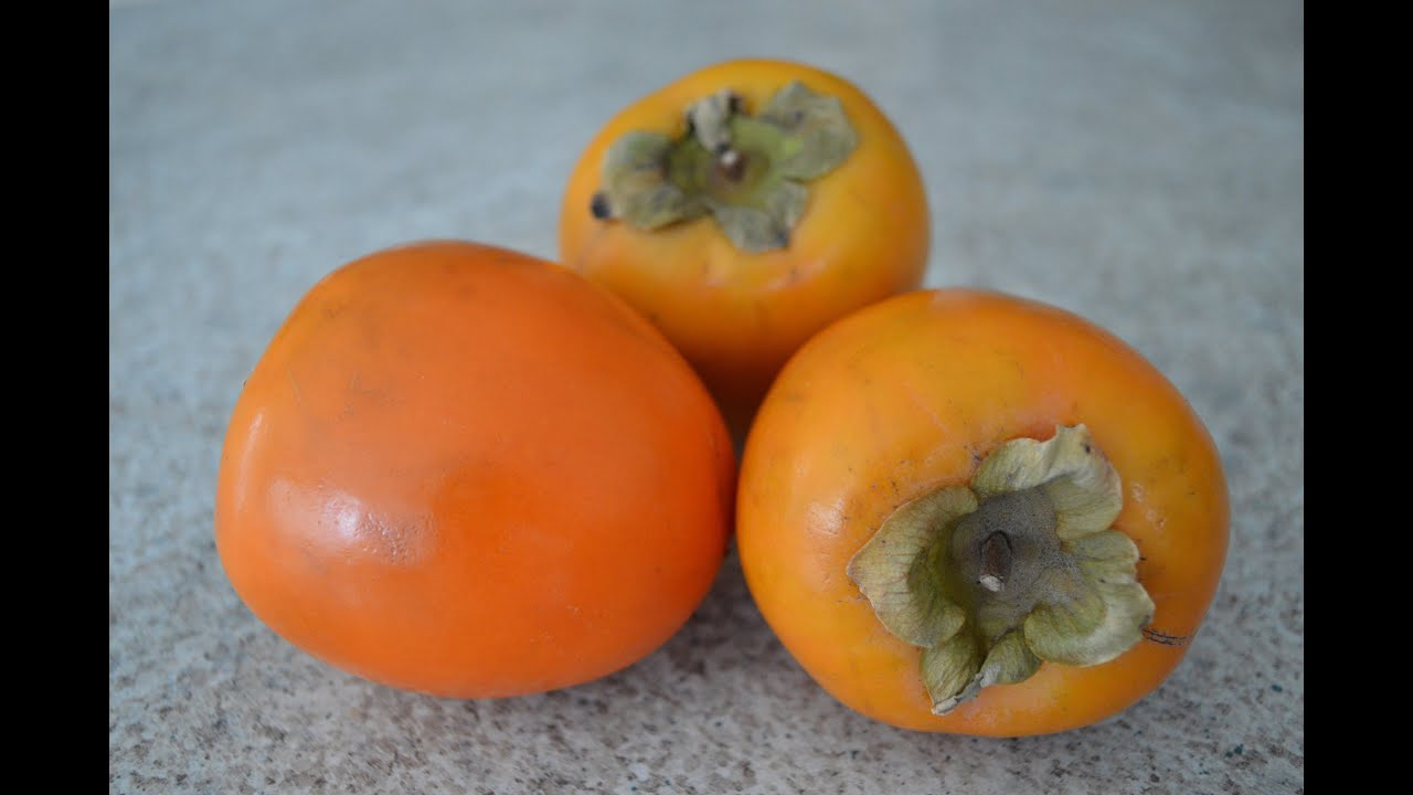 persimmon cu giardiază treatment of papilloma