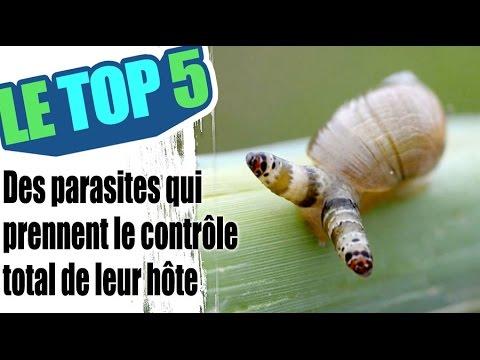 Când să bei comprimate parazite, 10 sfaturi pentru o sarcina sanatoasa
