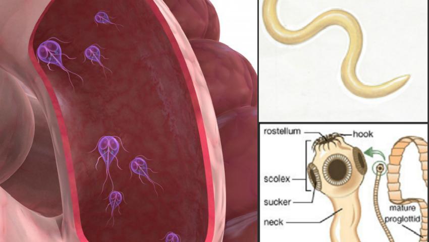 simptomele viermilor și tratamentul femeilor însărcinate după ce negii au fost cauterizați
