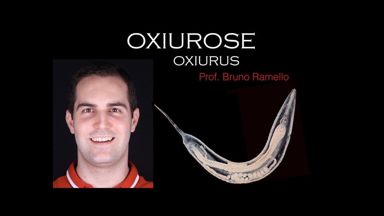 nome para oxiurus