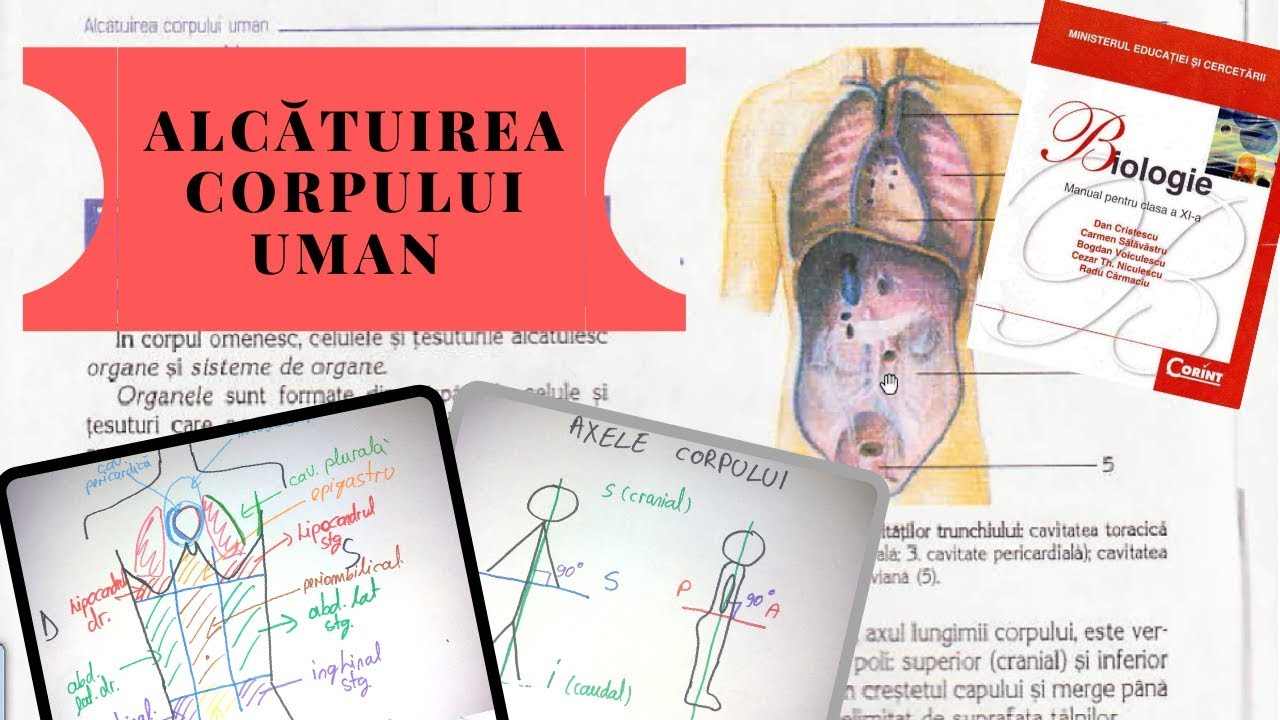 helminth therapy and autoimmune diseases