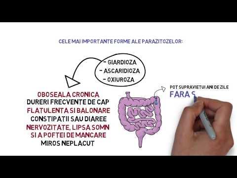 TERMENI DE BAZĂ A TRANSFUSIOLOGIEI