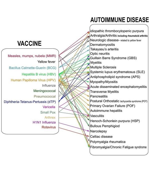 human papillomavirus vaccine and autoimmune diseases