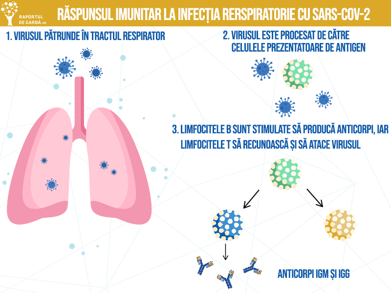 Cum să-ți întărești sistemul imunitar fără medicamente