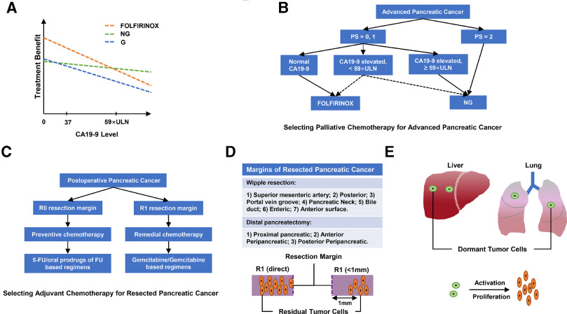 Pancreatic cancer folfirinox adjuvant Papillomaviridae que es Pancreatic cancer folfirinox adjuvant