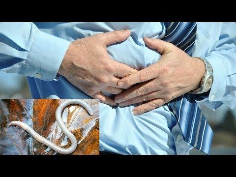 tratamentul larvelor de helmint