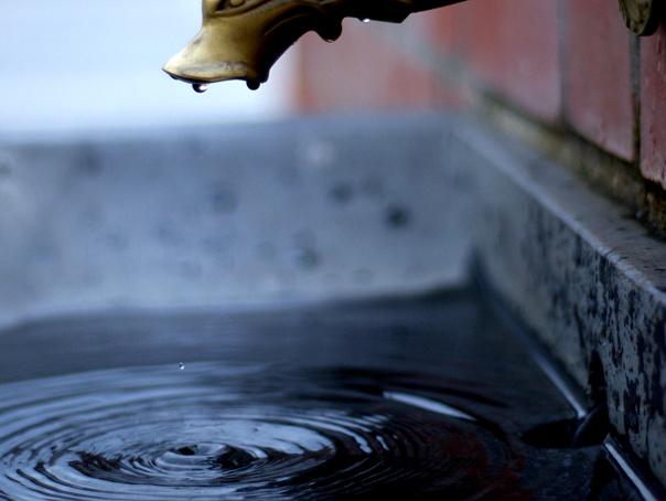 giardia în apa de la robinet
