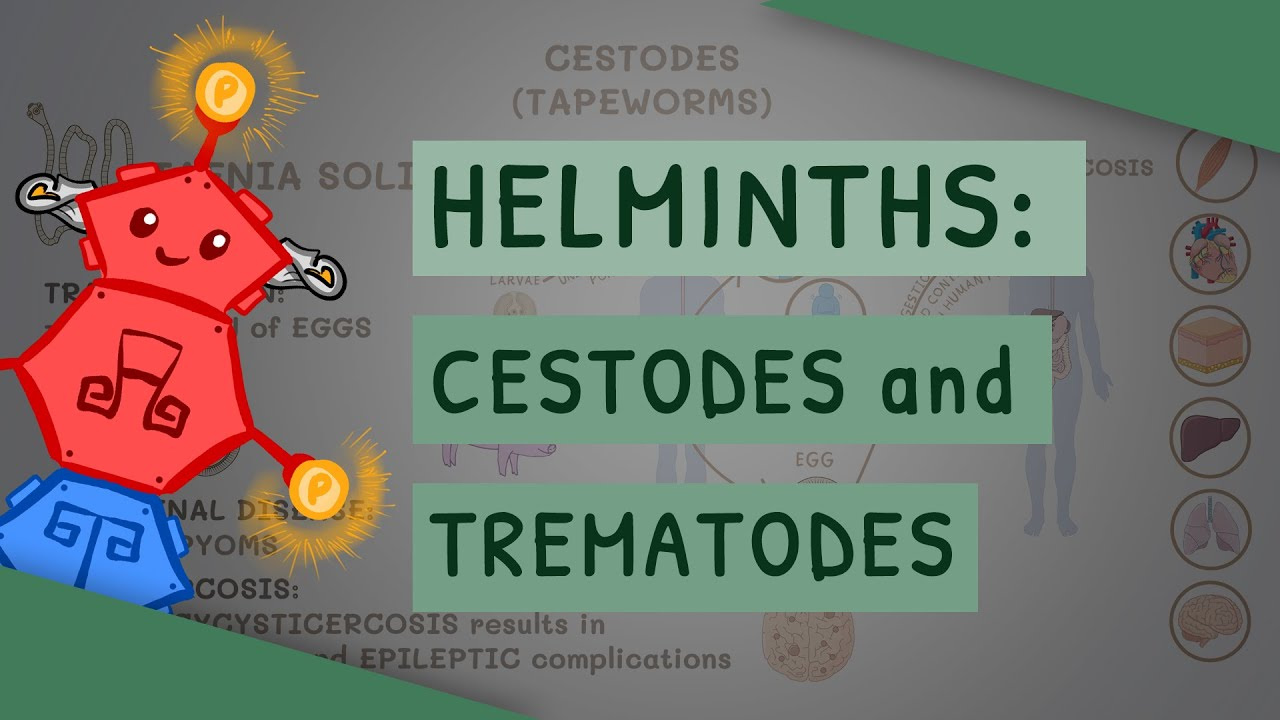 cestode helminths