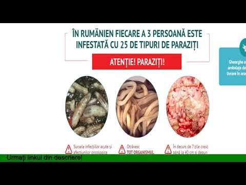 les parasites musique tratamentul antiviral al papilomelor