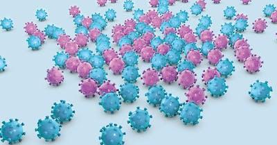 papilloma virus tumore uomo