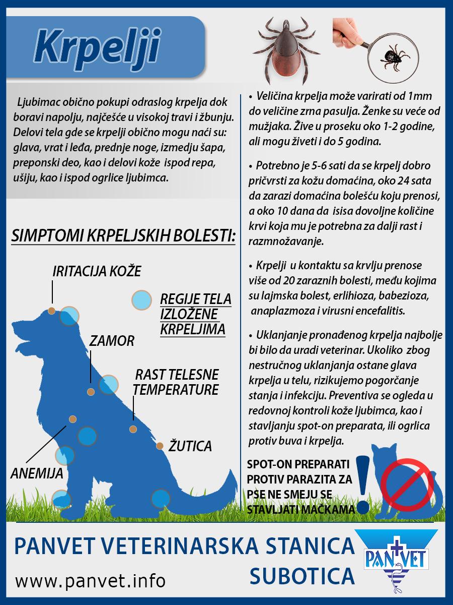 Paraziti na psu. Medicamente bune pentru vierme