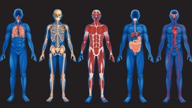 Cinci lucruri despre moarte, din perspectivă științifică