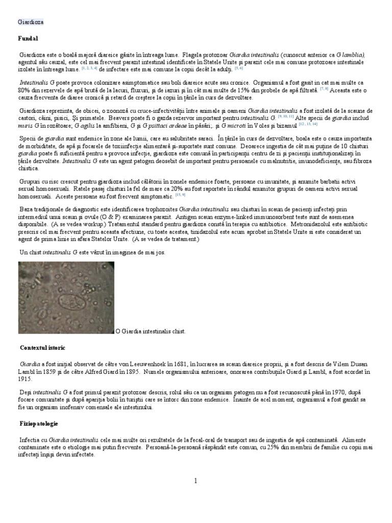 erupție cu viermi rotunzi pastile google de la viermi