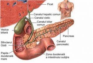cancerul veziculei biliare papilom filiform decât pentru a trata