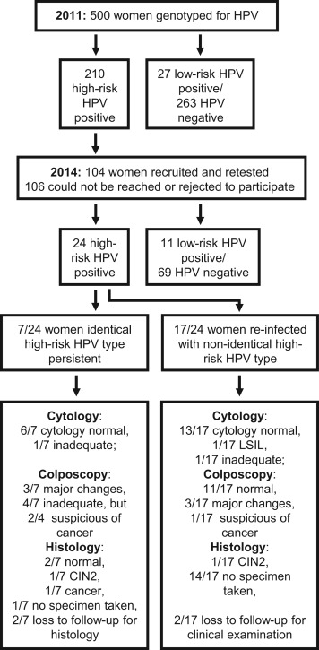 Hpv high risk go away Tratarea cu iod a viermilor