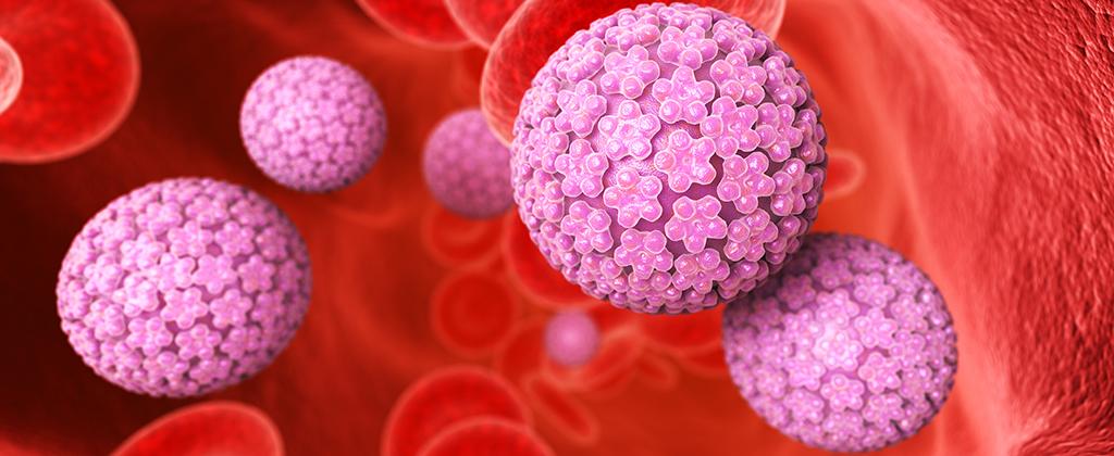 papilloma virus conseguenze per l uomo papilloma high risk