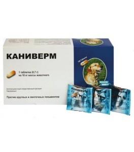 Tableta mare pentru titlul de viermi. VERMI - COMPRIMATE | Husse România