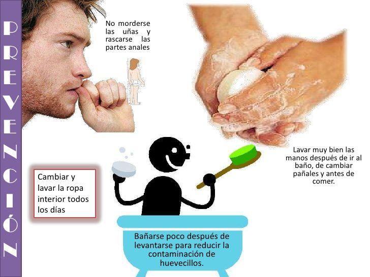 paraziti apicomplexans administrarea vermoxului la copii