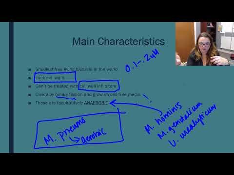 claridolul din recenziile papilomelor