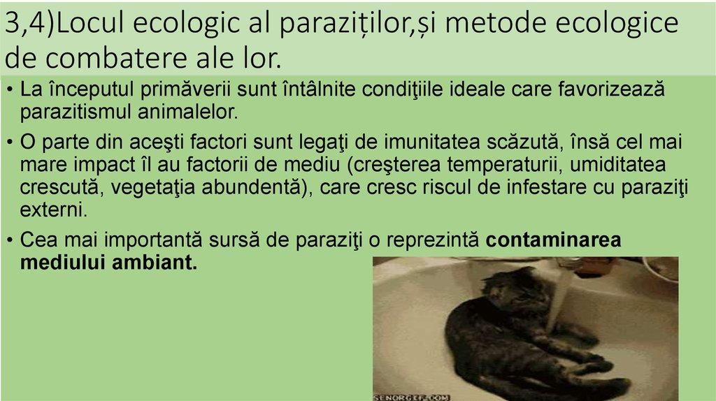 creșterea paraziților eozinofili
