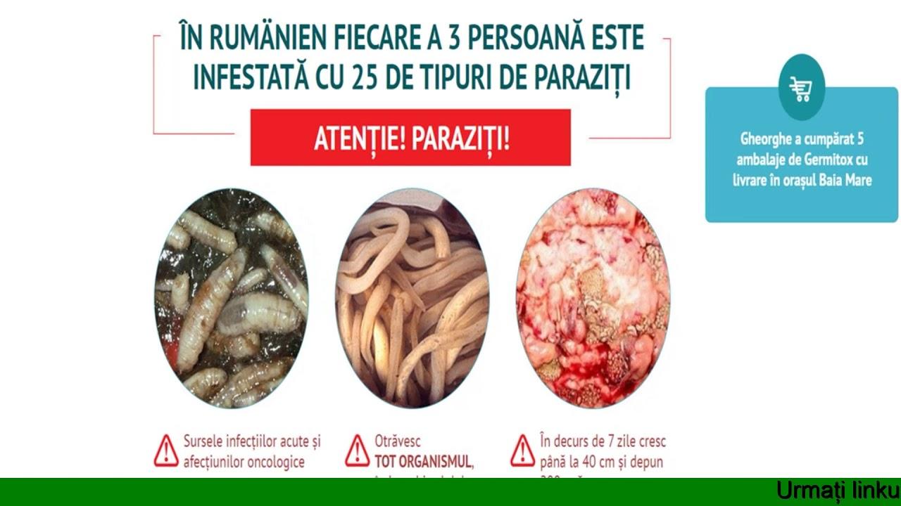 au fost descoperite helminti conservare a ciupercilor