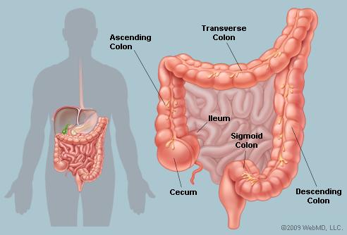 cancer vulve simptome care medic îndepărtează papiloamele de pe gât
