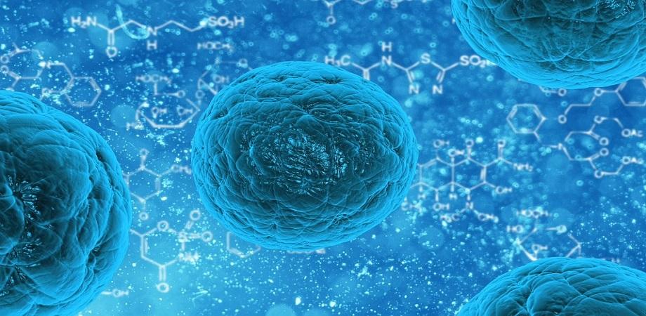 virusul papilomavirus uman poate fi vindecat