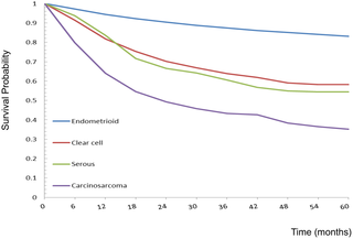 ovarian cancer risk