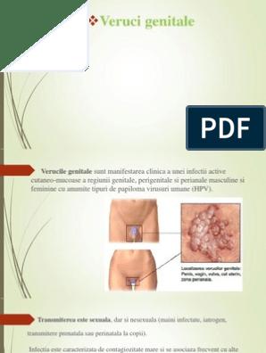 Boli cu transmitere prin sange