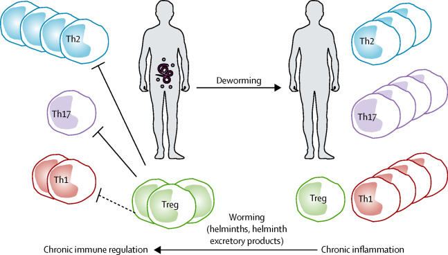 Helminths and helminthic