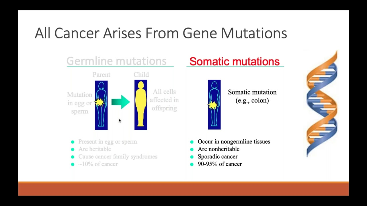 Familial cancer syndrome slideshare - Genetic cancer in breast